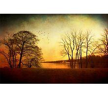 Autumn fever Photographic Print