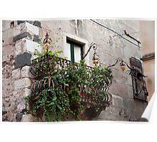 Vine Covered Balcony Poster