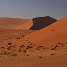 Dune shapes by christopher363