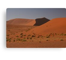 Dune shapes Canvas Print