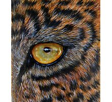 """Eye of the Leopard"" - oil painting Photographic Print"