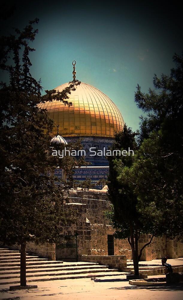 Between the Trees  by ayham Salameh