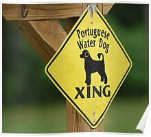 Portuguese Water Dog Xing Poster