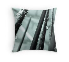 spikes of decorative grass Throw Pillow