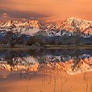Eastern Sierra Sunrise by Nolan Nitschke
