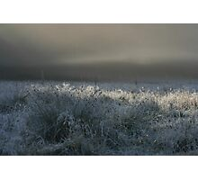 Morning Fog at Astrup Photographic Print