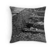 Paths Not Chosen Throw Pillow
