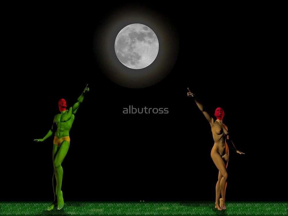 Point me to the Moon. by albutross