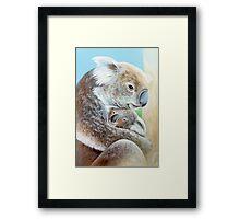 """The Koala cuddle"" portrait fine art Framed Print"