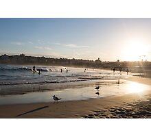 sunset on the beach at Bondi Photographic Print