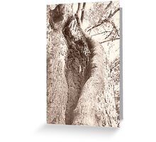 Trunk Greeting Card