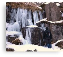 Cold As Ice! Canvas Print