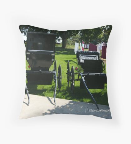 Amish Buggies in Ohio Throw Pillow
