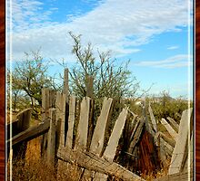 Unmended Fences by CowGirlZenPhoto