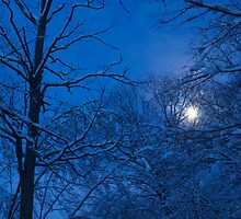 Snowstorm Moonrise by JETIII