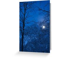 Snowstorm Moonrise Greeting Card