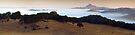 Lone Tree Road Dawn Panorama-2 by Zane Paxton