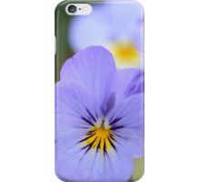 Pale Blue Pansies iPhone Case/Skin