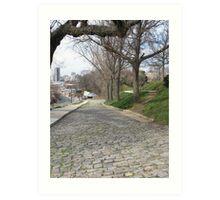 Cobblestones Libby Hill Park Art Print