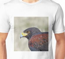 Harris Hawk Close Unisex T-Shirt