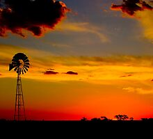 Nhill Mill by Murray Wills