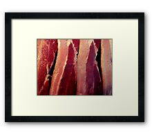 Why bacon of course Framed Print