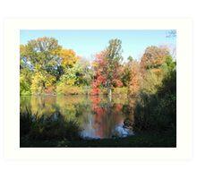 Hall's Pond in autumn Art Print