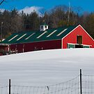 Blue Skies over the Red Barn by Monica M. Scanlan