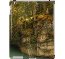 Johnson Canyon iPad Case/Skin