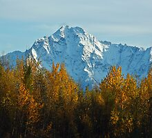 First Snow on Pioneer Peak by Sally Winter