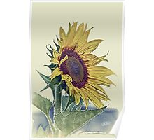 Sunflower Vintage Retro Floral Picture, Poster, Print, Shirt, Clothes, Cases, Skins, Home Decor, Stickers Poster