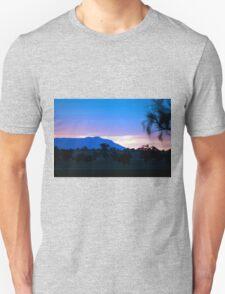Arapilies at sunset T-Shirt