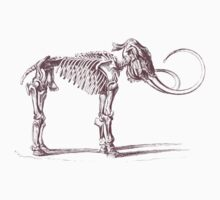 Woolly Mammoth Skeleton by Zehda