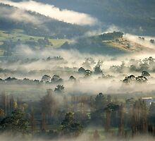 Mist in the Valley by Mark Hanna