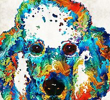 Colorful Poodle Dog Art by Sharon Cummings by Sharon Cummings