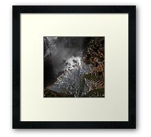 The quick way down Framed Print