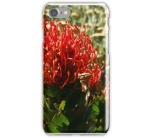Protreas in Sth Africa iPhone Case/Skin