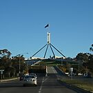 Parliament House View From the Road by Evita