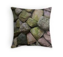 Stone age Throw Pillow