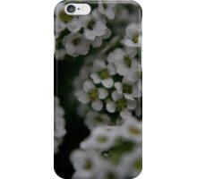 tiny bloom iPhone Case/Skin