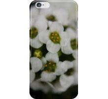 tiny bloom 0.2 iPhone Case/Skin