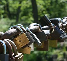 Locks of Love by Daniel Murley