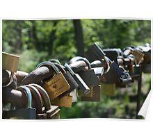 Locks of Love Poster