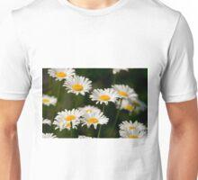 Oxe-eye Daisy Unisex T-Shirt