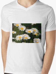 Oxe-eye Daisy Mens V-Neck T-Shirt