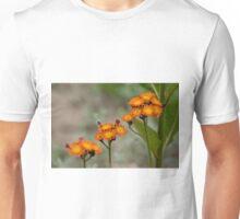 Orange Hawkweed Unisex T-Shirt