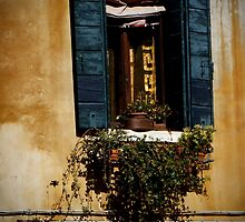 Venetian Window and Shutters by Rosemary Sobiera