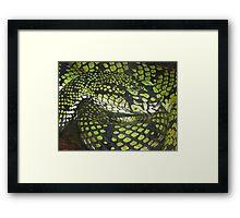 Deadly & Green Framed Print