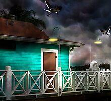 Nightlights by Stephen Warren