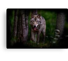 Timberwolf 1 - Photoshop Manipulation Canvas Print